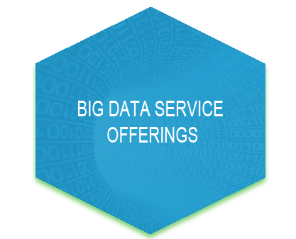Big Data Service Offerings