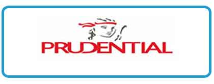 Pudential Client